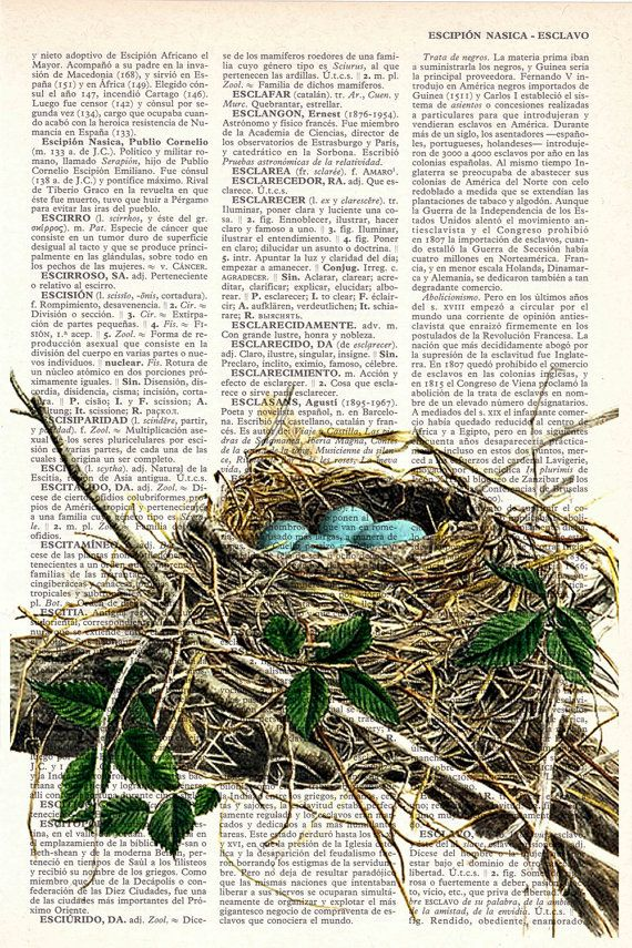 Bird nest print on Book page  Mixed media  art by PRRINT on Etsy,