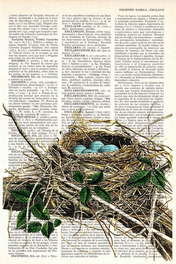 Bird nest print - quite cool