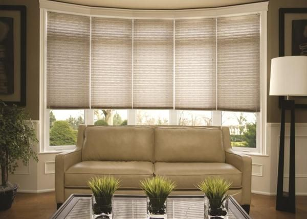 dress your bay window - like the idea of individual blind for each panel of the bay window. With or without curtains too.....that is the question?!