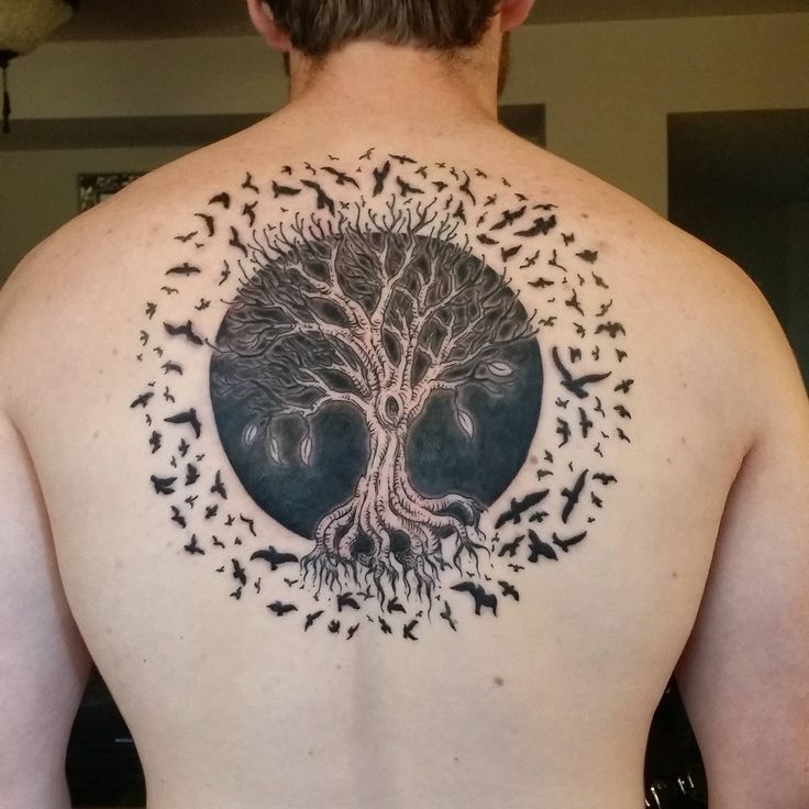 tree of life with a solar eclipse surrounded by birds first tattoo done by sam yamini. Black Bedroom Furniture Sets. Home Design Ideas