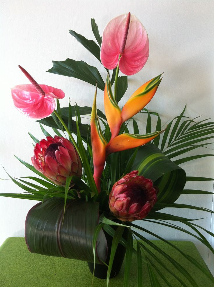 Bright Colors Of Exotic Flowers Bring That Sunny Feeling Home