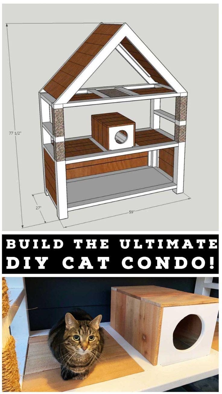 Ultimate DIY Cat Condo Cat condo, Diy projects for
