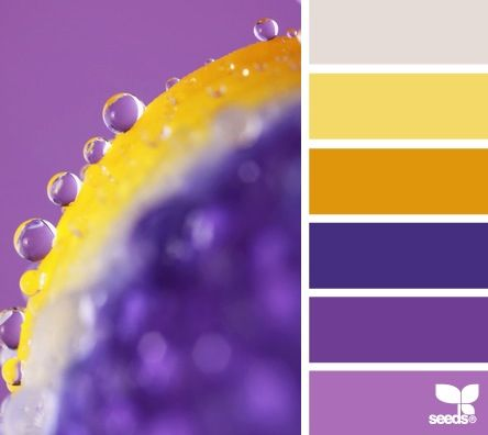 Color Detail Purple Palette Of The Year 2014