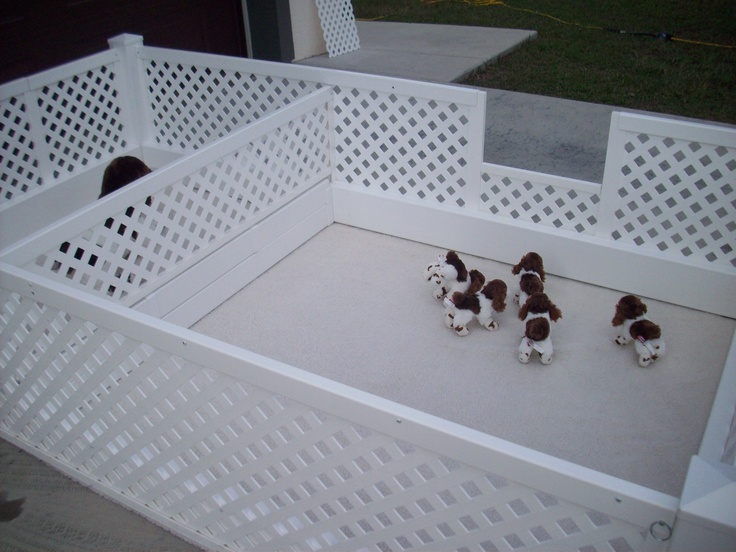 Puppy corral my whelping box dynamic whelping box and for Diy dog bathing system