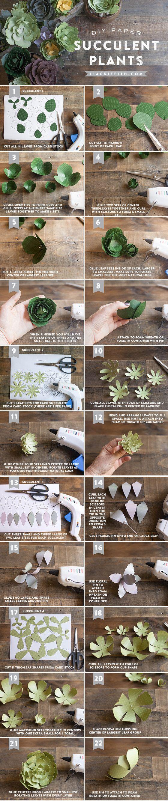 Use papel para fazer algumas plantas suculentas que nunca morrerão.