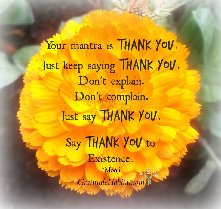 Quotes To Say Thanks: 285 Best Images About Quotes...Gratitude And Kindness On