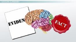 Logical Fallacy: Definition & Examples - Video & Lesson Transcript ...