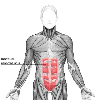 FITNESS AND SCIENCE BEHIND IT: ABS SECRET REVIELED