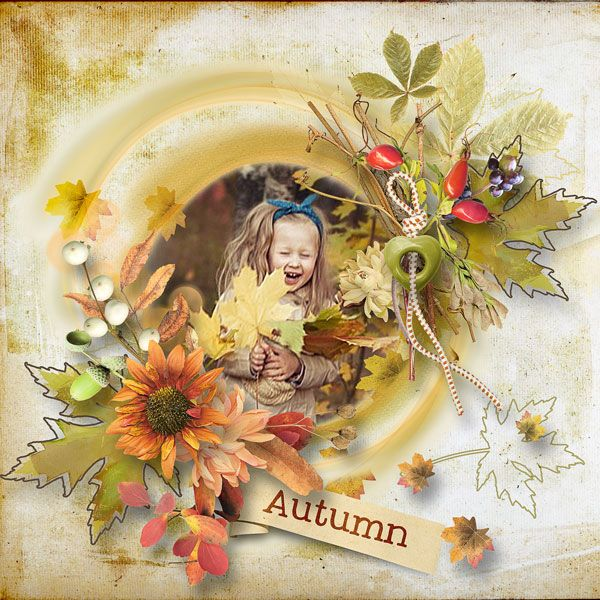 Autumn Glow Collection by et designs  http://www.thedigichick.com/shop/Autumn-Glow-Coll.html  save 65%  photo Anastasia Serdyukova Photography use with permission