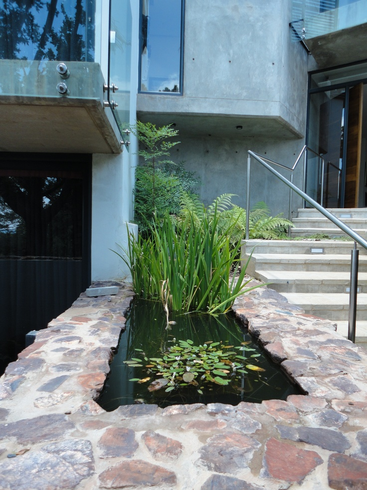 2010 - 2011 House Tucker @ Waterkloof, Pretoria - Front door water feature with 'waterblommetjies' and water irises