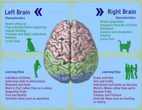 Left Versus Right Brained Children – Differences In Learning Styles | Love Parenting