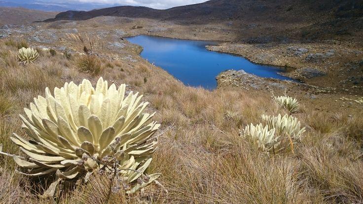 Caminata #SantaBárbara a #LagunadelosTutos, diciembre 28 de 2014