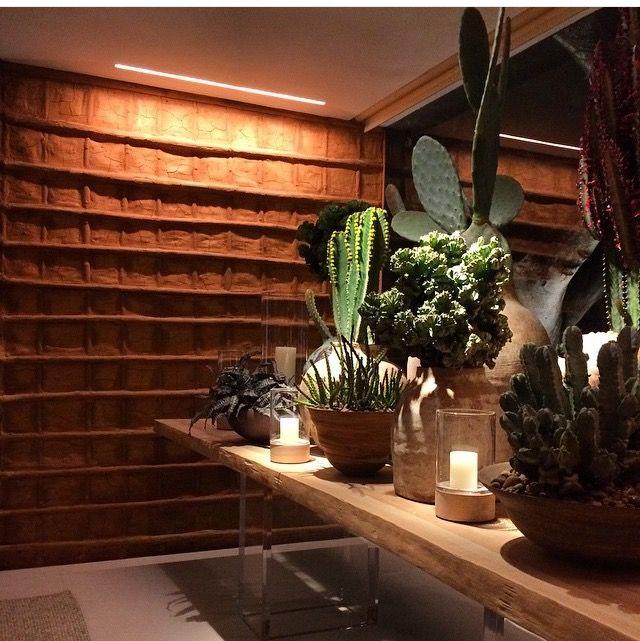 roberto migotto / parede pau a pique e plantas do sertão