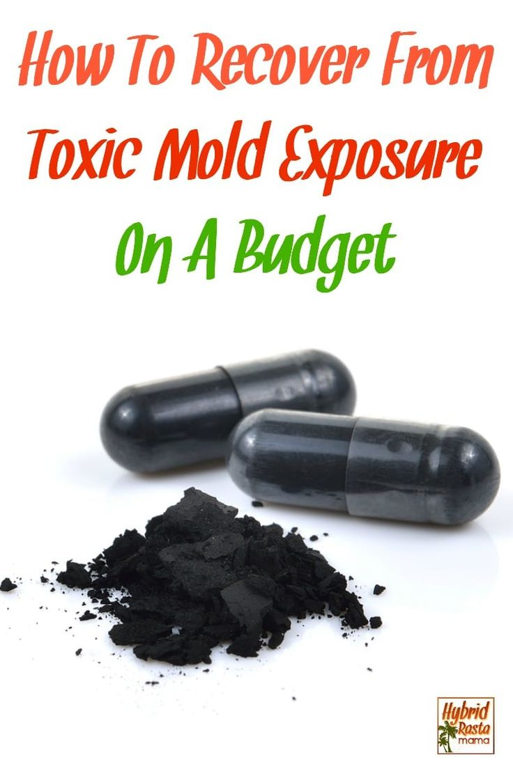 How To Detox Your Body From Mold (What I Did) Mold
