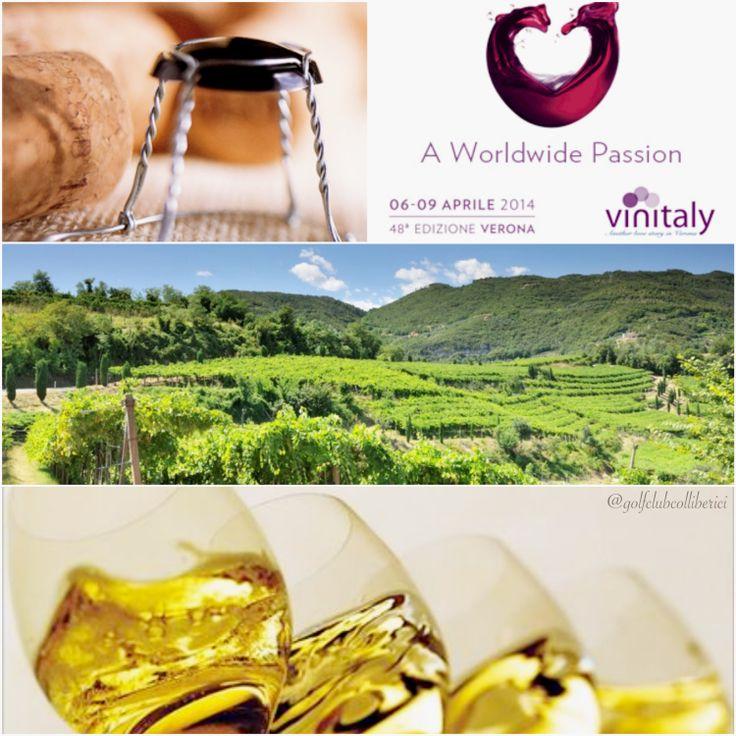 Il territorio dei Colli Berici è caratterizzato da un'alta vocazione vitivinicola: 145 Km di vigneti e boschi fanno di questo territorio il polmone verde del Veneto dove si produce un'ampia varietà di vini.  I Vini D.O.C. dei Colli Berici spaziano dai rossi e corposi come il Tai Rosso, il Cabernet Sauvignon ai vini bianchi quali il Manzoni Bianco, il Pinot Grigio e lo Spumante Metodo Classico e Charmant.  #vinitaly #vinitaly2014