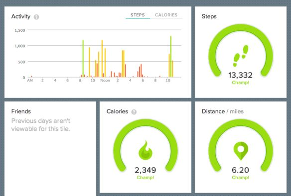 Fitbit Flex Review Awesome Stats Dashboard And Feedback