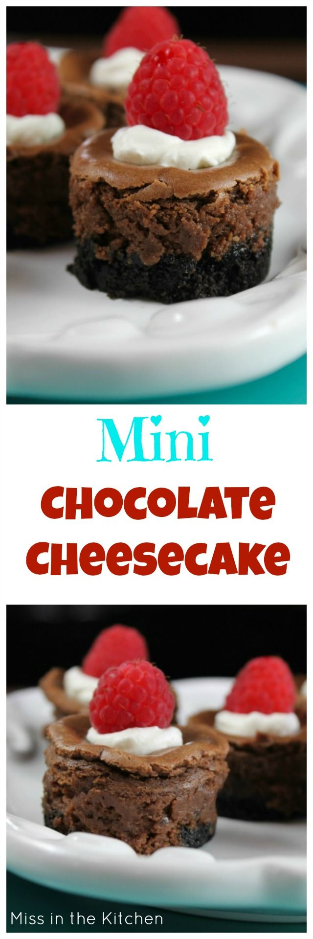 Mini Chocolate Cheesecake Recipe perfect for any holiday or family celebration. Found at MissintheKitchen.com