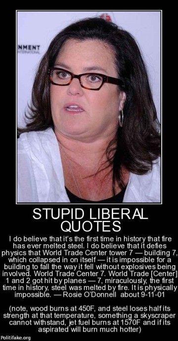 politics Stupid Liberal Quotes