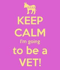 The life of a veterinarian