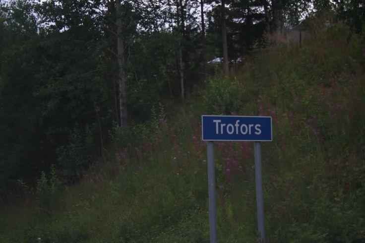 photo Trofors-1.jpg