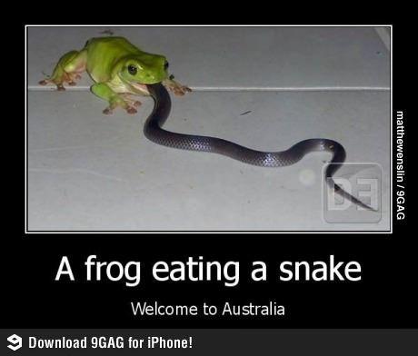 Welcome to Australia.