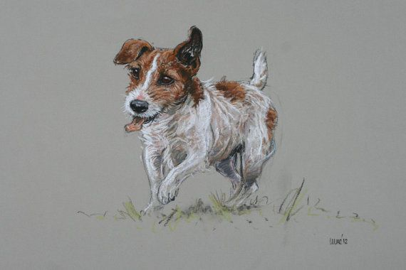 Hairy fun, limited edition print of my original soft pastel sketch of a Jack Russell Terrier bounding towards you :) This is a small run of 100 prints,