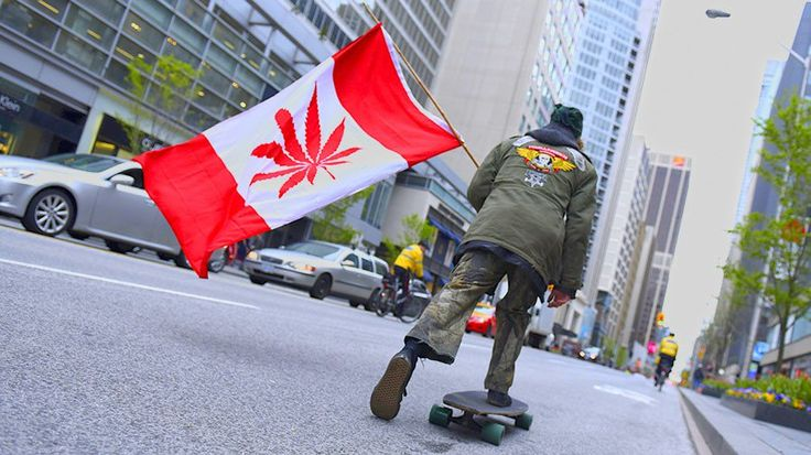 "Canada is a step away from becoming the first G7 country to legalize recreational marijuana with weed retailers getting ready to make billions of dollars. The Cannabis Act was introduced in the Canadian Senate last week. The bill is overwhelmingly backed by the general public and Prime Minister Justin Trudeau and is expected to pass by July 2018 or earlier. ""I think it is broadly recognized that criminalizing cannabis has been a failure,"" said a sponsor of the bill Senator Tony Dean..."