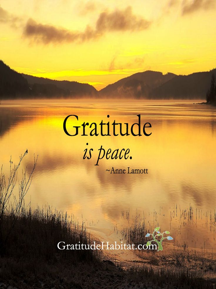 Gratitude is peace.