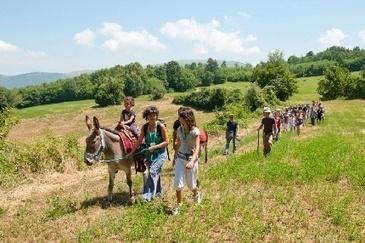"""""""A passo d'asino"""" alla scoperta del vino marchigiano - Corriere Nazionale"""