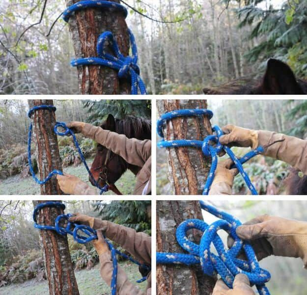 Bowline | How To Tie Knots | Ways To Tie Different Types of Knots