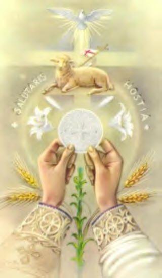 """""""Na Eucaristia celebra-se a vocação para a imortalidade;ela não é quantidade de tempo,mas qualidade de vida.Isso exige atitude coerente,construindo em cada dia,incansavelmente,essa qualidade de imortalidade ...!!!"""""""