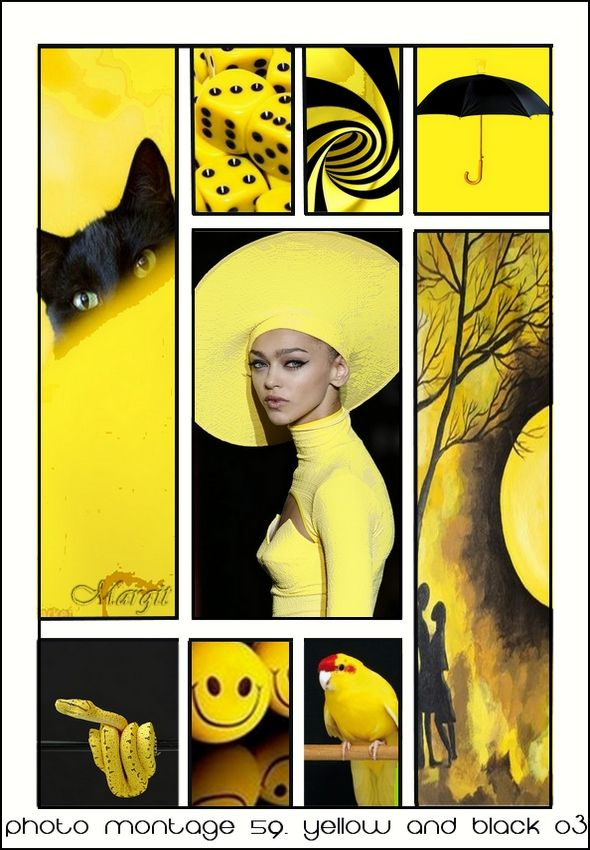 Photo montage 59. yellow and black 03