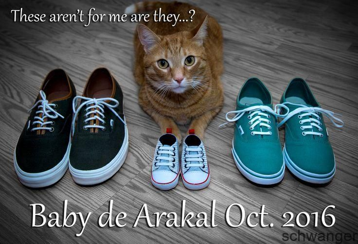 Cat Baby Announcement!, # Schwangerschaftsankündigung   – Schwangerschaft bekan…