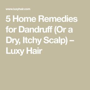 5 Home Remedies for Dandruff (Or a Dry, Itchy Scalp) – Luxy Hair