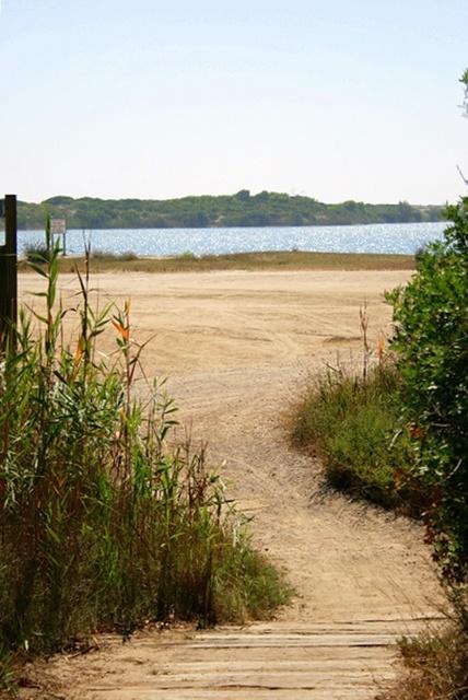 Devesa's Lake. El Saler. Valencia.