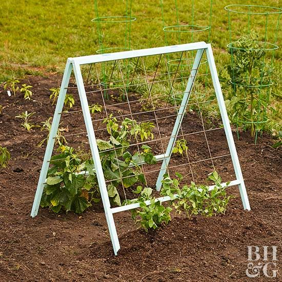 Grow tomatoes, peas, and cucumbers with ease on this A-frame trellis that is oh-so-easy to make.