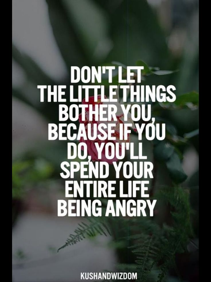 Quotes And Pics Of People With Anger: 17 Best Funny Anger Quotes On Pinterest
