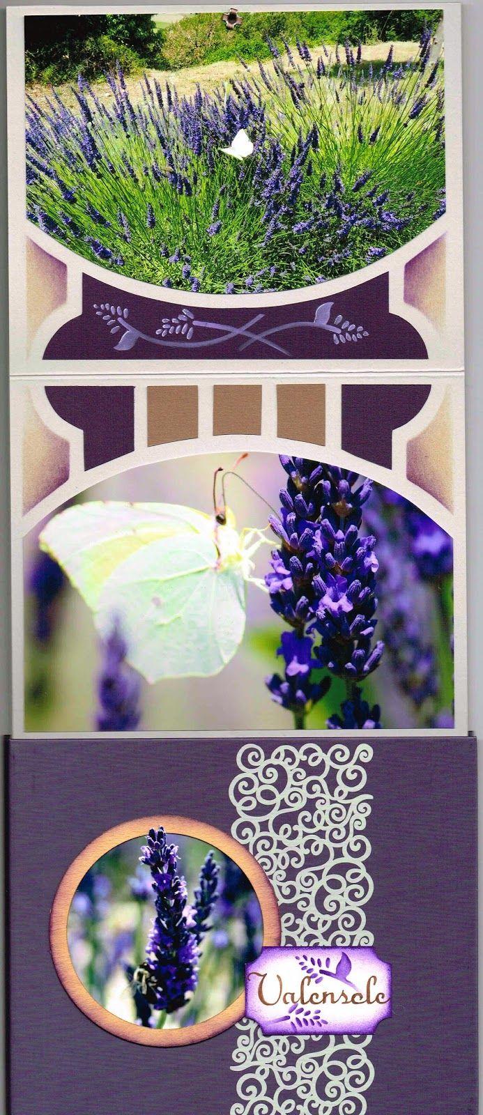 album accordéon gabarit AZZA symphonie