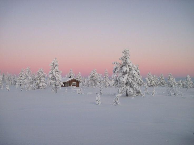 Boreális Erdők, Norvégia