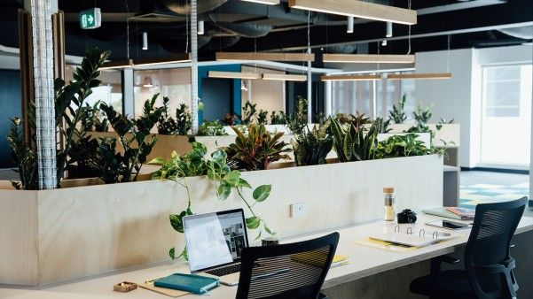 Become apart of the future co-working generation
