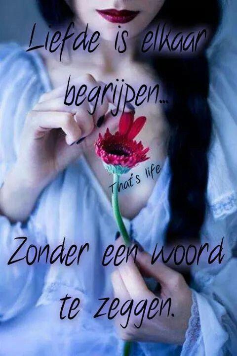 Liefde is elkaar begrijpen ...