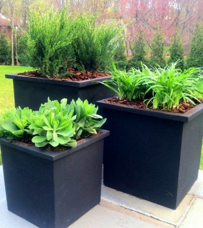 pots à fleurs extérieurs carrés en noir de style minimaliste