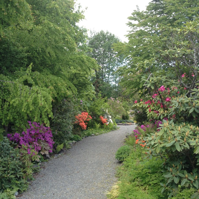 Highline Seatac Botanical Garden Gardening Pinterest
