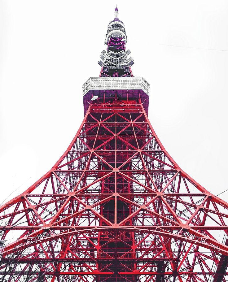Tokyo Travel Guide - food, accommodation and how to get around!