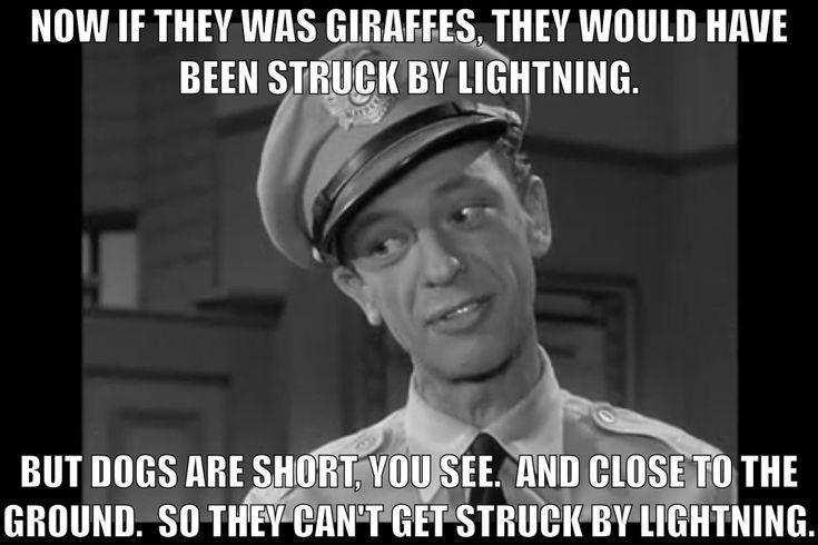 Barney Fife Giraffes.  The Andy Griffith Show.