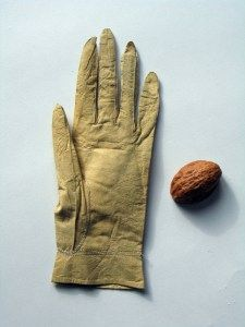 Limerick Gloves – a celebrated style of glove that became popular throughout England and Ireland during the late 18th, early 19th century. Commonly referred to as 'chicken-skins', the gloves were renowned for their exquisite texture. They were made from a thin strong leather derived from the skin of unborn calves and sold encased in a walnut shell. By the early 19th century, Limerick gloves became a fashionable item, and, like French kid gloves, were admired for the superior quality of the leat
