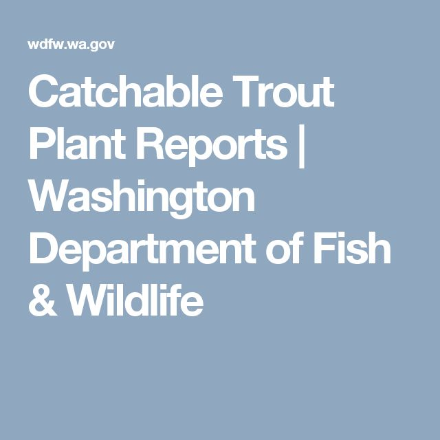 1000 ideas about trout stocking on pinterest fishing for Washington department of fish and wildlife