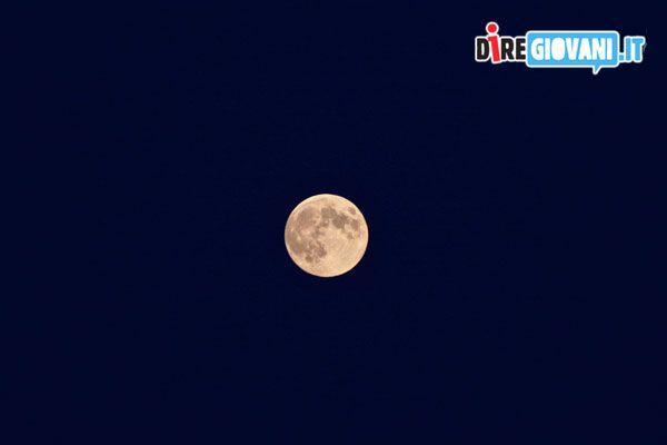 """Titolo: Perigeo Descrizione: """"È tutta colpa della luna, quando si avvicina troppo alla terra fa impazzire tutti."""" William Shakespeare Nome dell'Autore: Francesca Bonomini"""
