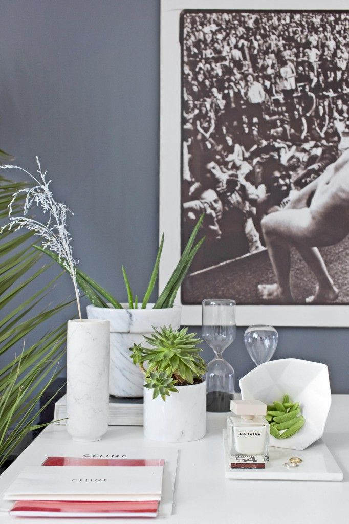 Hjemme hos Celine Aagaard går det i kaktus, grønne planter og Aloe Vera.