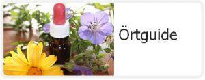 """Vad är örtmedicin? Örtmedicinen innefattar, förutom det som vanligen menas med """"örter"""", även andra växter såsom träd, havstång eller lavar. Såväl hela växter som delar används. De växter som används i medicinskt syfte kallas medicinalväxter. Här följer ett litet örtlexikon som ger dig en snabb översikt om några populära medicinalväxters användningsområden. Aloe vera (blad): –...  Läs mera »"""